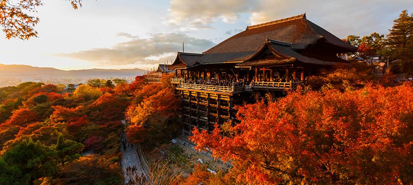 Vacances au japon, Séjour à Kyoto