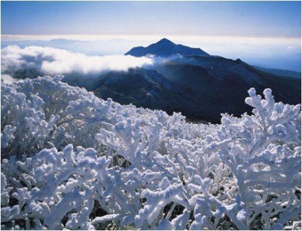 Vacances Japon Kyushu Yakushima Séjour Japon