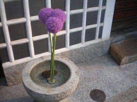 Voyage au Japon, cours d'arrangement floral japonais