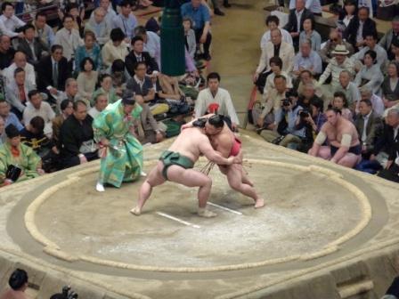 Voyage séjour au japon, assister à des luttes entre Sumo