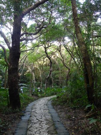 voyage-sejour-circuit-japon-okinawa-sefa-utaki