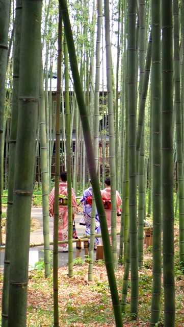 sejour-voyage-circuit-japon-kyoto-arashiyama-geisha
