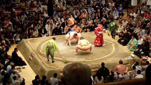 Assiter à un combat de sumo à Tokyo